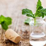 Come combattere la cellulite con la betulla