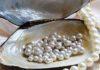 Moda, perle, pulizia, collana, orecchini