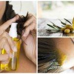 Come eliminare i pidocchi – Olio di Oliva