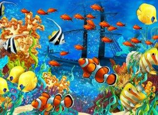 Come riconoscere le malattie dei pesci marini