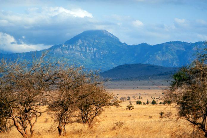 Cosa visitare in Kenya
